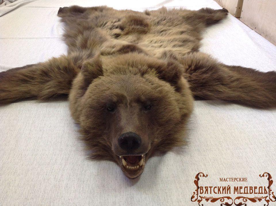 Мастурбация на шкуре медведя
